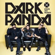 Dark Panda – what is this sound?